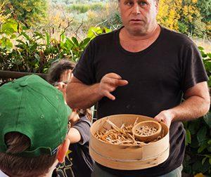La fagiolina del lago trasimeno è una eccelnza alimentare dell'Umbria