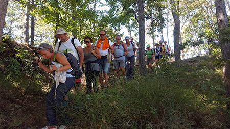 Cammino del Monte Peglia, escursioni tra boschi di querce e silenzio