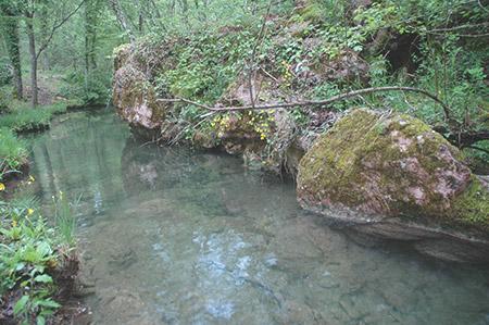 Cammino del Monte Peglia- Attraverseremo torrenti incontaminati