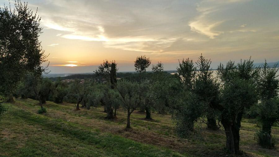 Trasimeno Trekking - La rilassante atmosfera del tramonto
